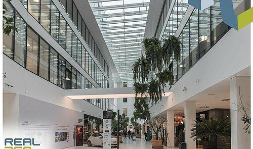 Mall EG III