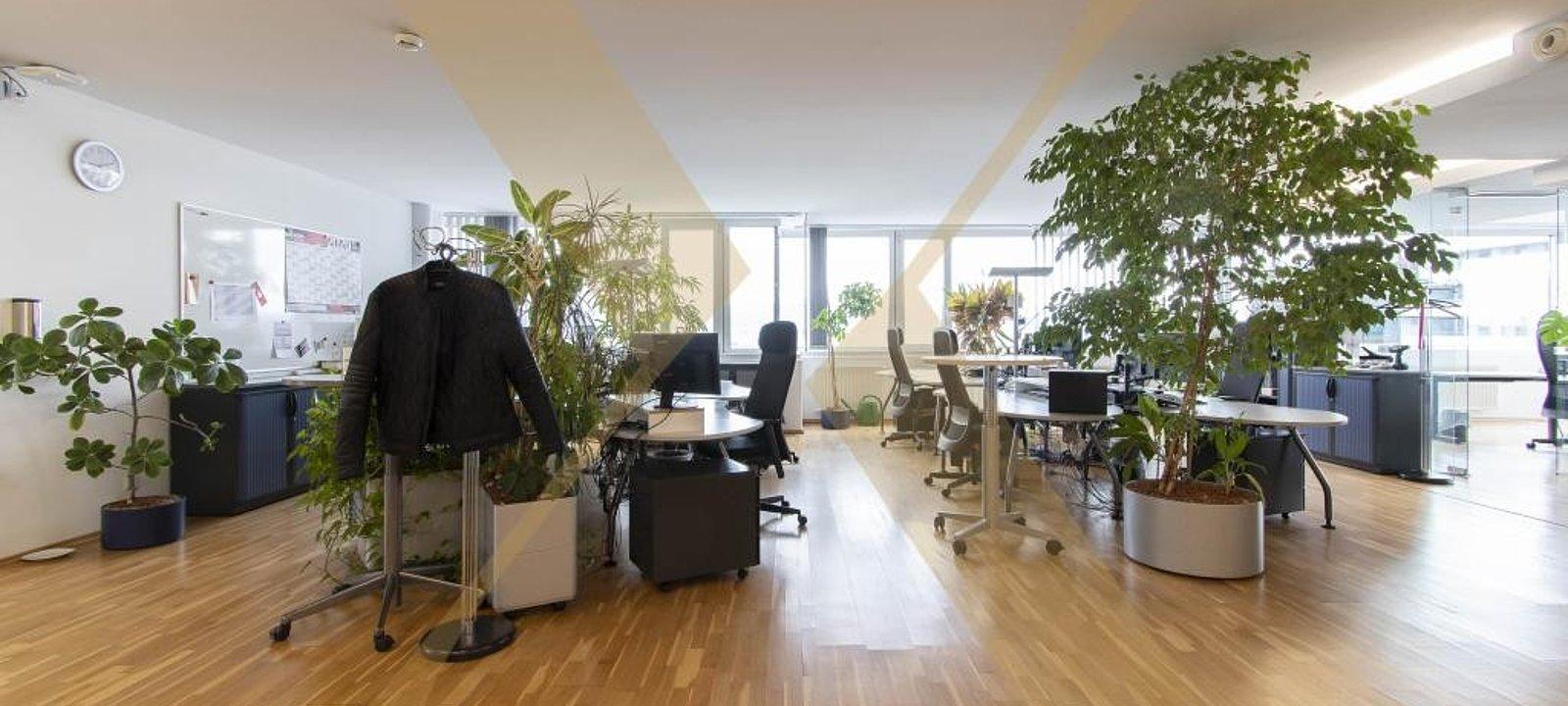 Großraumbüro u. Empfangsbereich